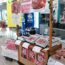 新潟空港をご利用の皆様、ありがとうございました。